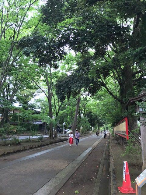 氷川神社 参道