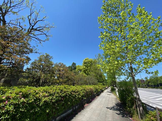 東京 日比谷公園